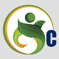 Chinar Services - Logo